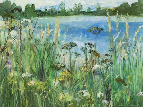 Lochore and Wild Flowers