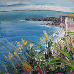 Rathlin Island from the Clifftop