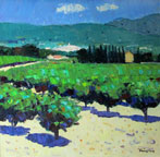 Vineyards at Sablet