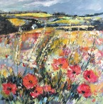 Lincolnshire Poppy Fields