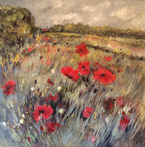 Rutland Poppy Fields
