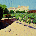 Vineyards, Le Castellet