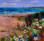 White Flowers amongst Sea Grasses, North Berwick